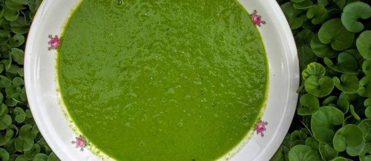 מרק תרד ירקרק ב-5 דקות